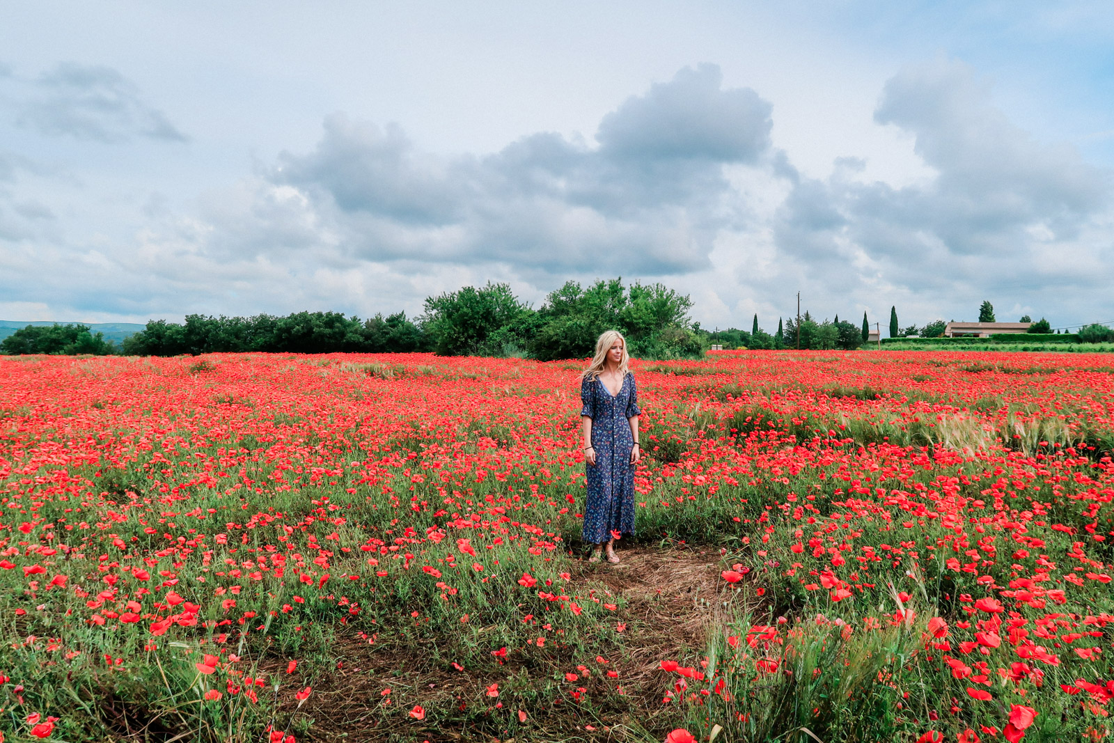 Dresses for running through fields of flowers wonder awe dresses for running through fields of flowers izmirmasajfo